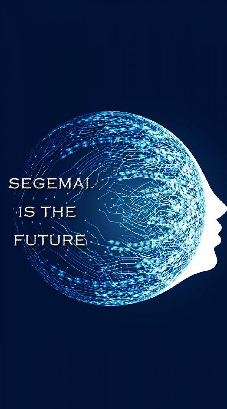 SEG-TEC